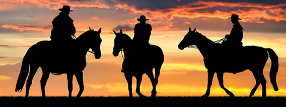 The Exciting History of Cowboys in the Sunshine State
