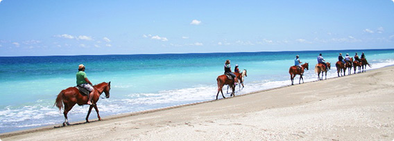 Hutchinson Island Horseback Riding