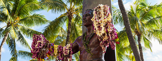 Visit Maui and Discover Hawaii