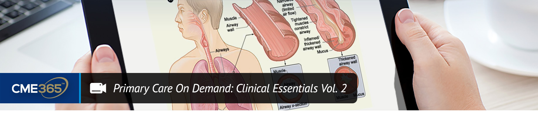 Primary Care On Demand: Clinical Essentials Vol. 2