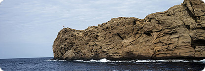Snorkel, Scuba, or Hike around Mighty Molokini